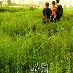 Chinese Father Diary Diari dal Set di Chinese Father di Yin Lichuan, giorno 4