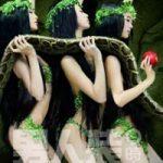 Eva il serpente e la mela