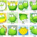 Frog leon, design cinese