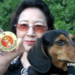 Targhette di riconoscimento per i cani cinesi