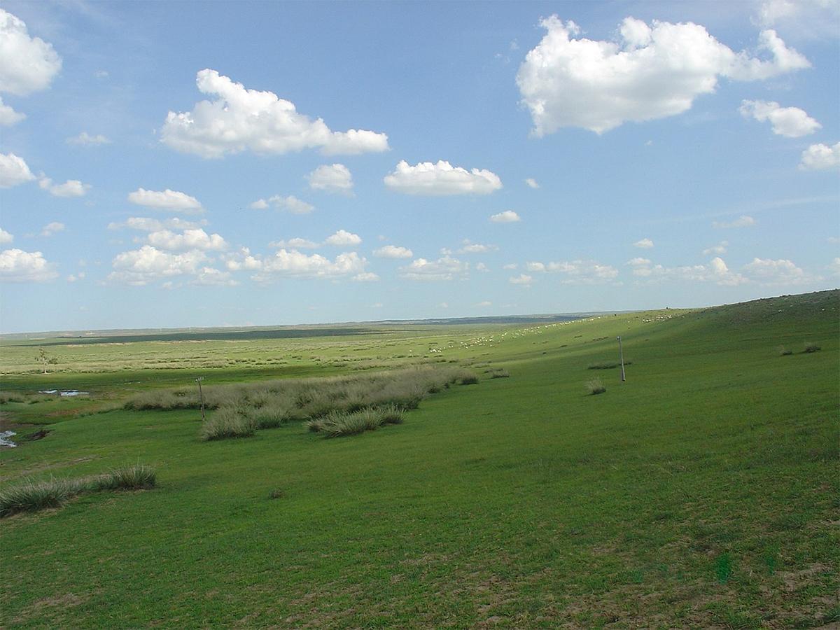 mongolia-interna-immagini