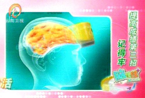 casco-cervello