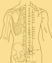 agopuntura, il busto
