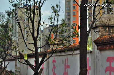 alberi-2