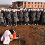 I contadini cinesi coltivano case invece di cibo