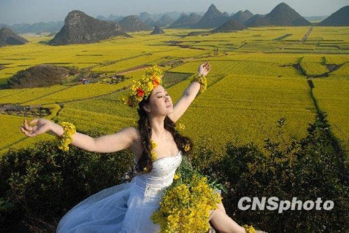 Furong jiejie chunjie