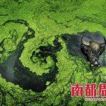 Le impressionanti immagini dell'inquinamento idrico in Cina