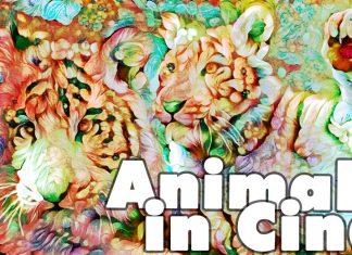 animali in Cina