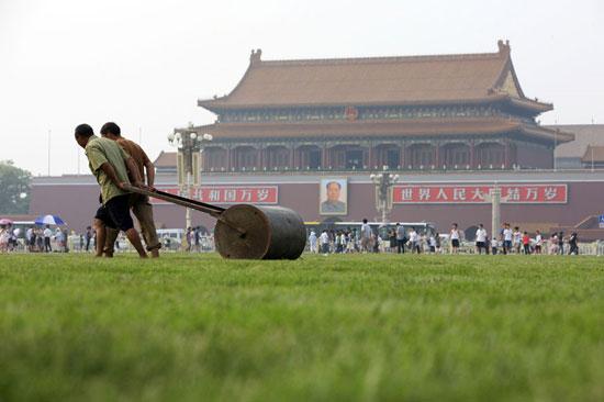 tiananmen_green-prato di Tiananmen