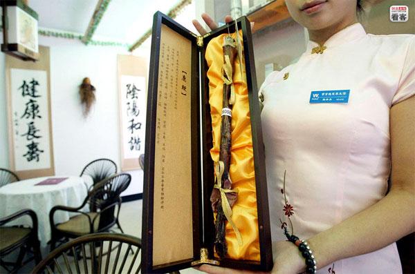 qigong_fever_3-Medicine Alternative in Cina