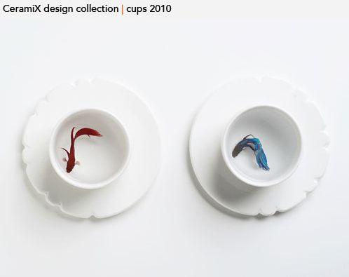 009CeramiX2010