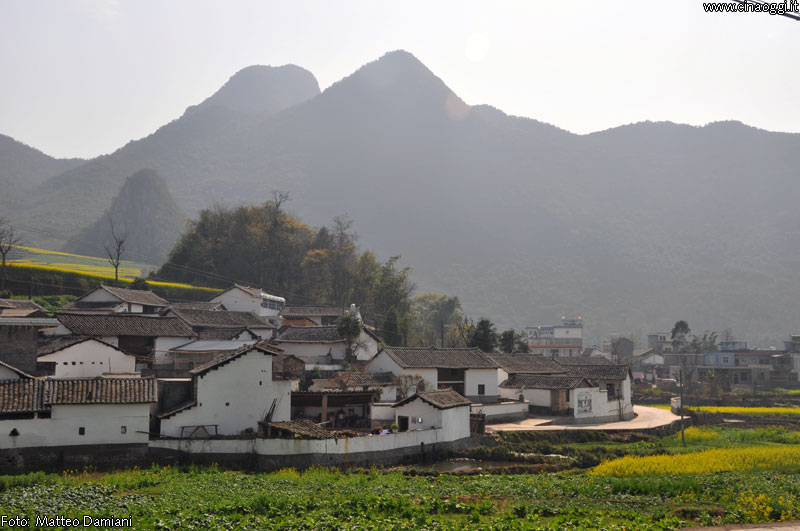 luoping_flowers_yunnan_012