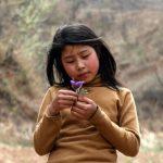 Una famiglia di contadini dello Henan si nasconde nelle montagne per 12 anni