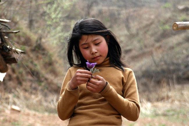 henan-twelve-005-evitare la legge del figlio unico