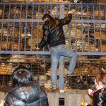 1300 cani salvati dal macello da volontari cinesi