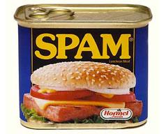 perché la spam si chiama spam?