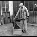 12 immagini rare dei monatti cinesi nel 1948