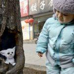 Pittura realistica nelle cavità degli alberi