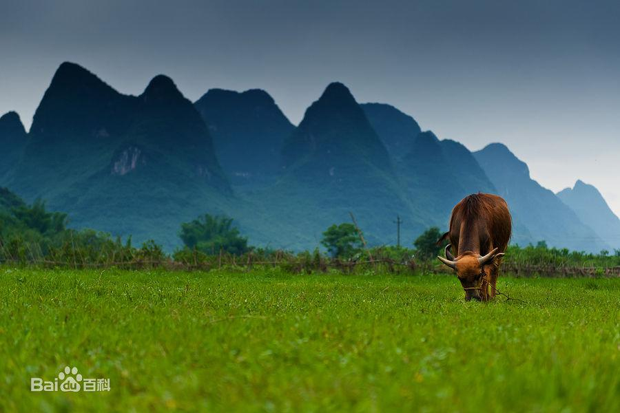 Yangshuo immagini