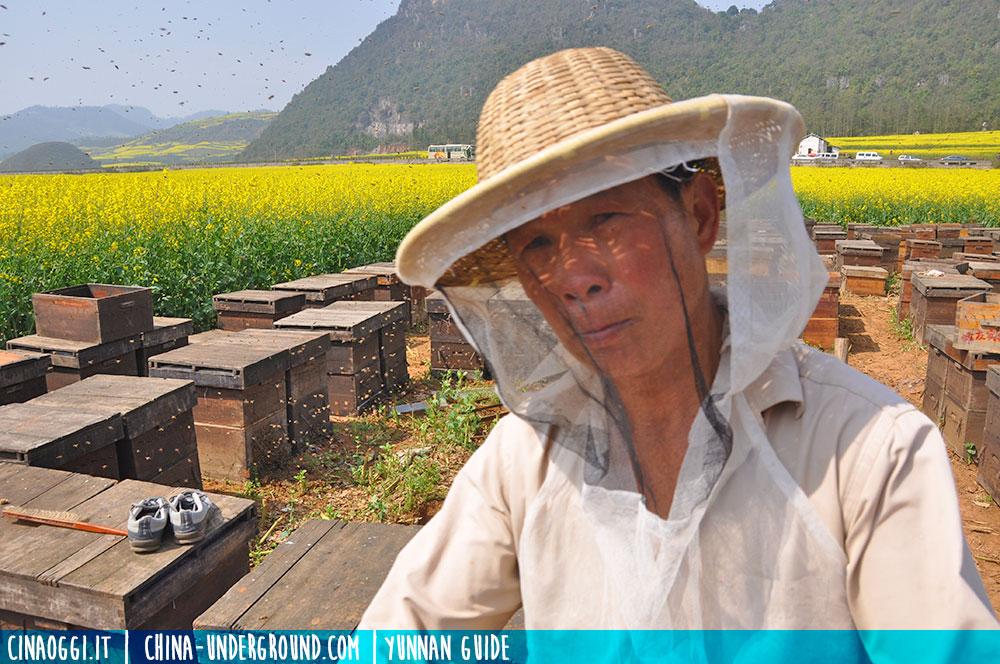 apicoltore cinese
