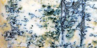 gorgonzola vietato in Cina